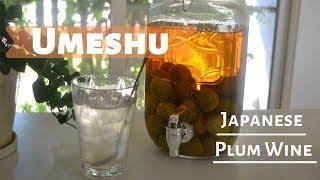 How to make ★Umeshu★Japanese Plum wine〜梅酒〜(EP106)