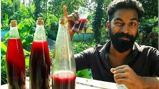My Home Made Wine Making | ഞാൻ ഉണ്ടാക്കിയ വൈൻ