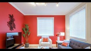 Stylish wall colour combination ideas I Wall color design ideas I wall painting designs ideas