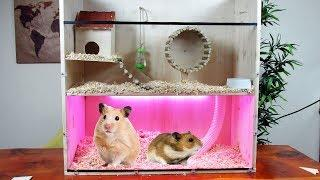 Hamster Ev Yapımı - Ahşap Hamster Kafesi ve Oyuncak Yapımı