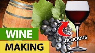 Home Wine Bottling - Concord Grape
