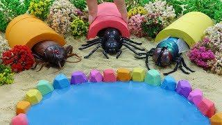 DIY How To Make House for Beetles w Pool with Kinetic Sand, Slime and Learn Colors