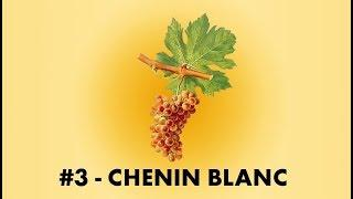 Cépage Sorcier #3 : Le Chenin Blanc | English Sub