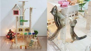 How to Make Popsicle Stick House, Cat tree, Tower, Playground for Rat, Hamster, Squirrel  DIY