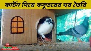 How To Make A Pigeon House Using A Carton | Pigeon House | Pigeons | ExistBD