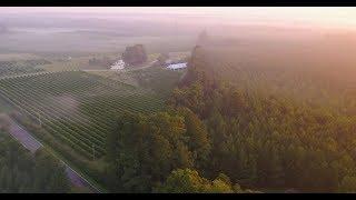 A Wine Lover's Escape in Eastern North Carolina