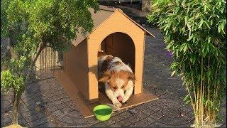 How to Make Amazing Puppy Dog House from Cardboard | Mr Ruby