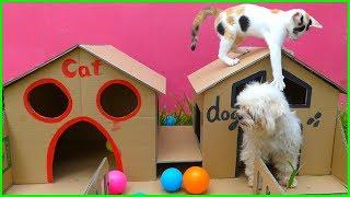 How To Make Puppy Dog And Cat House From Cardboard