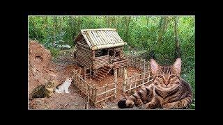 How to Build Amazing Cat Pet House In Wild #Primitive_Copy / Primitive building