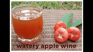 How to make Wine from Rose Apple at Home without Yeast.