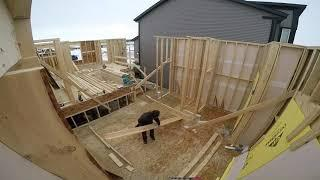 How to build a house alone. Season 2 Episode 11
