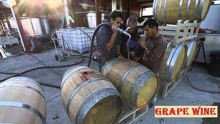 Amazing Grape Processing technology ★ How to make wine from grapes at home - Fast workers god level
