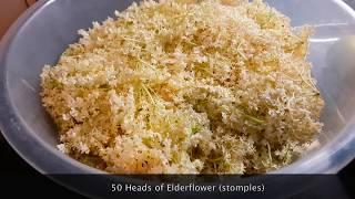 "How to make easy DIY Homebrew Elderflower  ""champagne""  fizzy cheap alcoholic wine 12.5% alcohol"