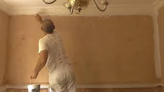 MIST COAT ON NEW PLASTER  What is a ....? Why a ....? How to ....?