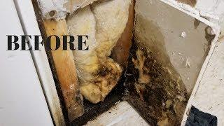 I Found Mold in My Basement! - New Insulation, New Drywall, New Pretty Paint! - Thrift Diving
