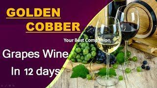 Grapes Wine in 12 day | മുന്തിരി വൈൻ ഉണ്ടാക്കുന്ന വിധം in 12 day How to make grapes wine in malayalm