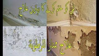 how to treat damp walls before painting//wall painting techniques/paint master junaid