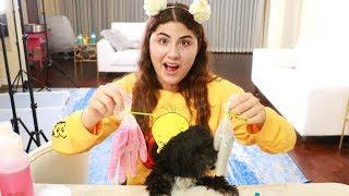 I LET MY DOGS PICK MY SLIME INGREDIENTS ~ they made better slime than me!