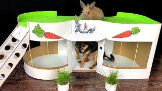 How to Make Amazing Pet House from Cardboard - House for Rabbit