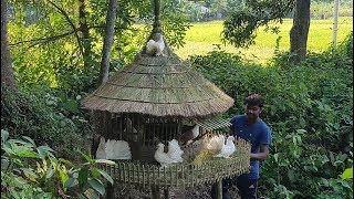 Primitive Pigeon Home Making By Smart Village Boy - Beautiful Bird House