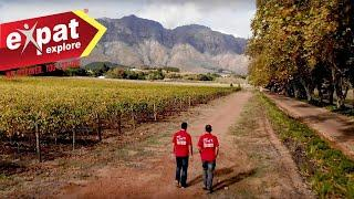South Africa Wine Tour - Discover SA Wines - Expat Explore Travel Tips