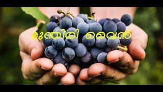 മുന്തിരി വൈൻ വീട്ടിലുണ്ടാക്കാം | how to make a grape wine | wine | christmas special |