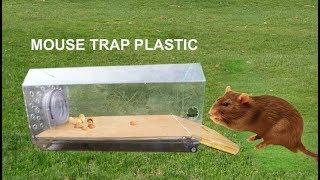 How to Make a Mouse Trap Using Plastic Wine Box - Mouse Trap with Wine Box! 139