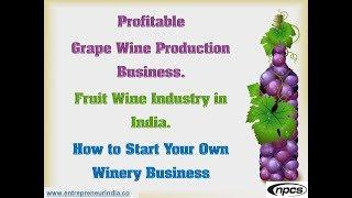Profitable Grape Wine Production Business